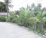 Photo Land and Farm For Sale in Ormoc City for ₱...