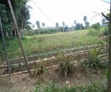 Photo Land and Farm For Sale in Masbate City for ₱...
