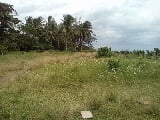 Photo Land for sale in Dinahican, Infanta