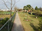Photo Famhouse for sale in banigala islamabad